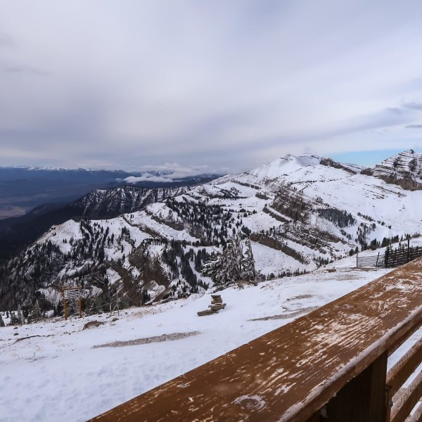 Jackson, WY Travel Guide